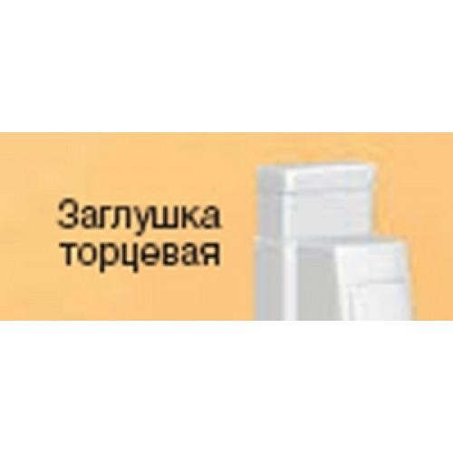 Заглушка торцевая для кабель-каналов DLP 40/32.x12.5, белая, Legrand